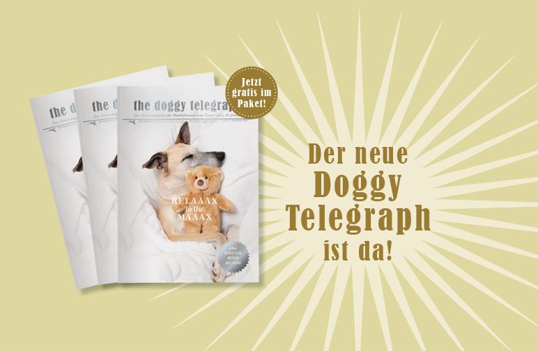 The Doggy Telegraph - Die neue Ausgabe ist da