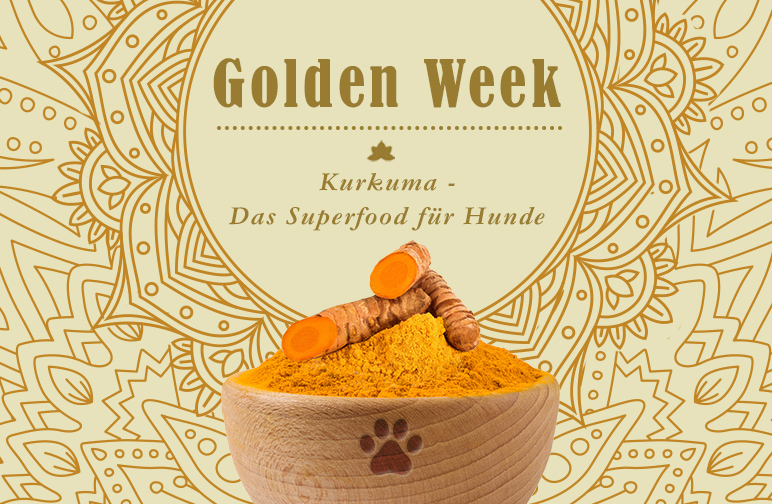Golden Week - Superfood Kurkuma für Hunde