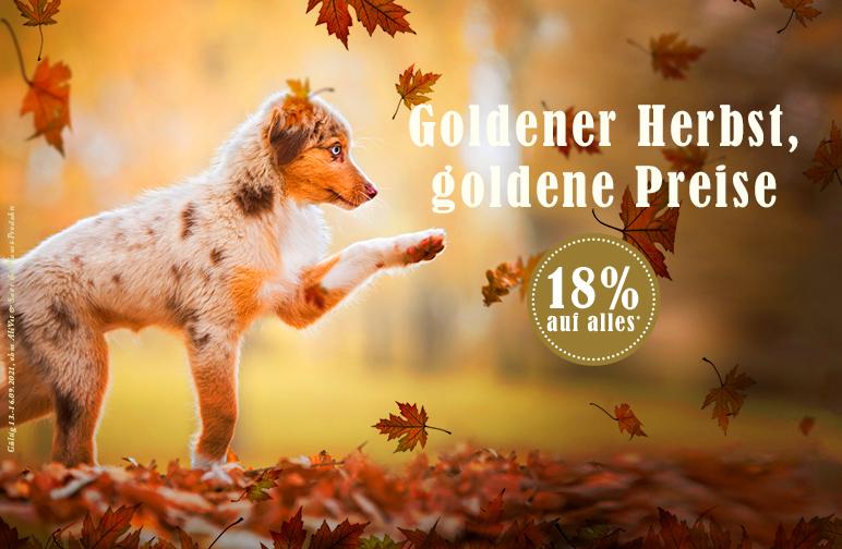 Goldener Herbst, goldene Preise