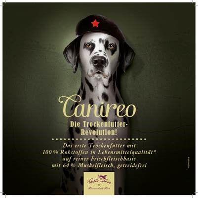 TC DE Flyer Canireo 21x21
