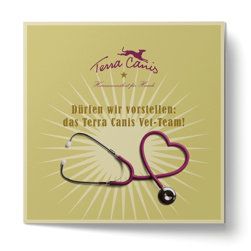TC Flyer Veterinaires, version anglaise