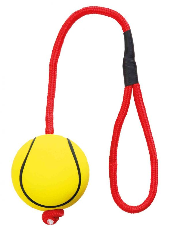 Sportball am Seil